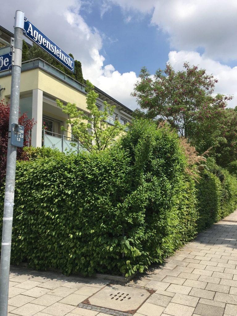 Aggensteinstraße