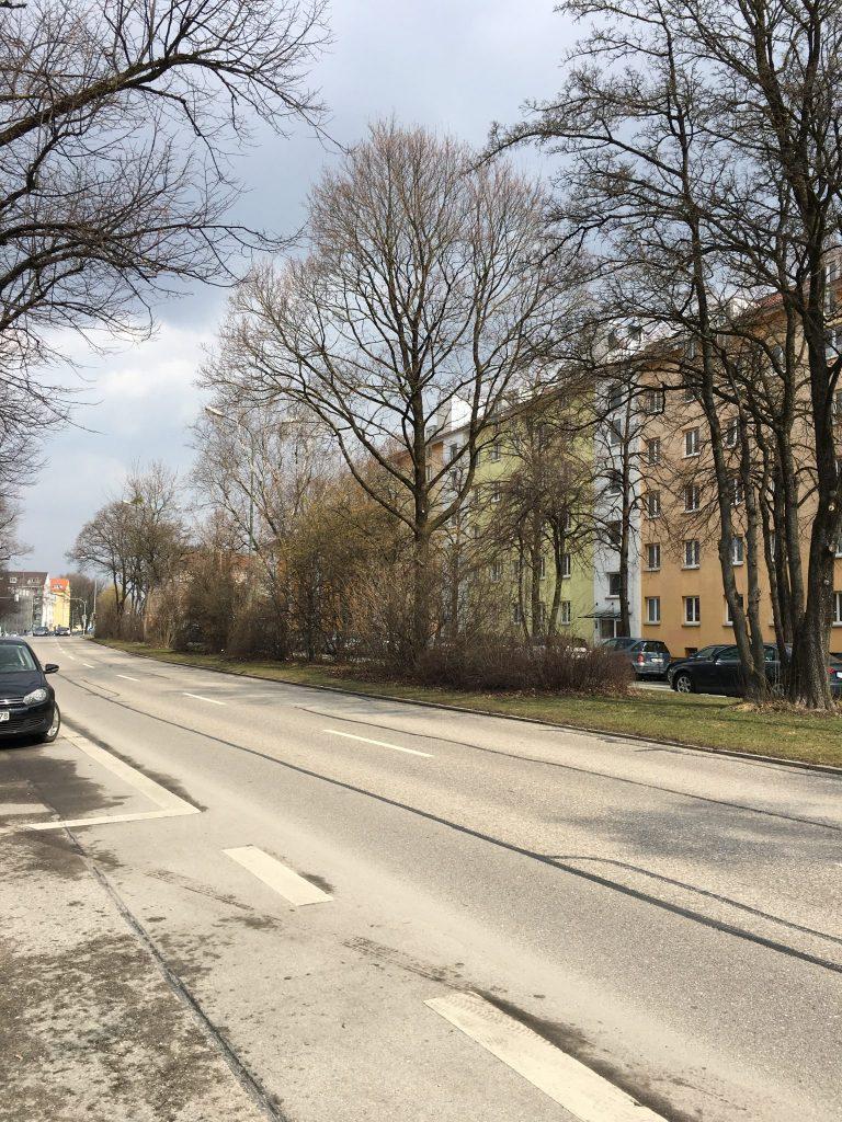 Ampfingstraße