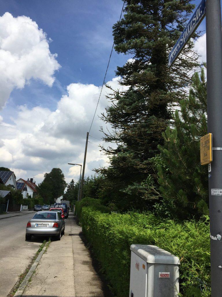 Auerspitzstraße
