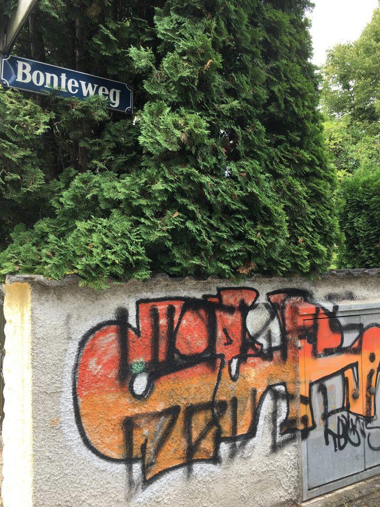 Bonteweg