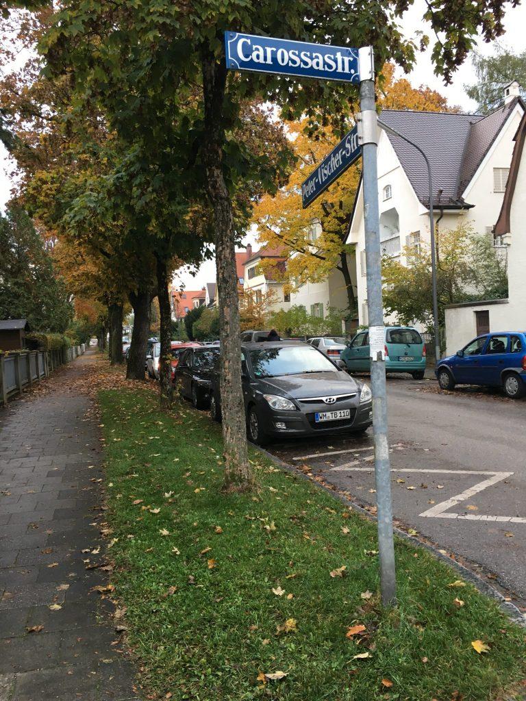 Carossastraße