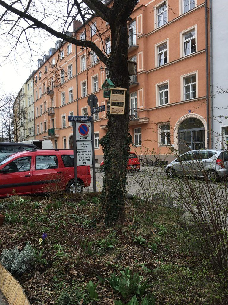 Alpenplatz