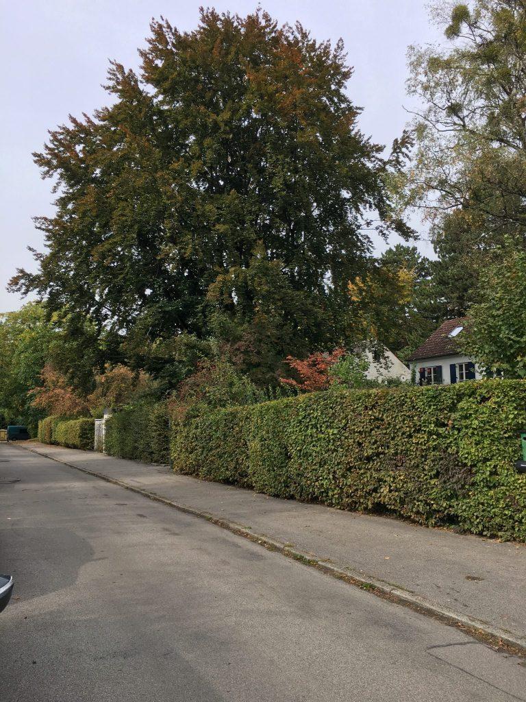 Herrenchiemseestraße