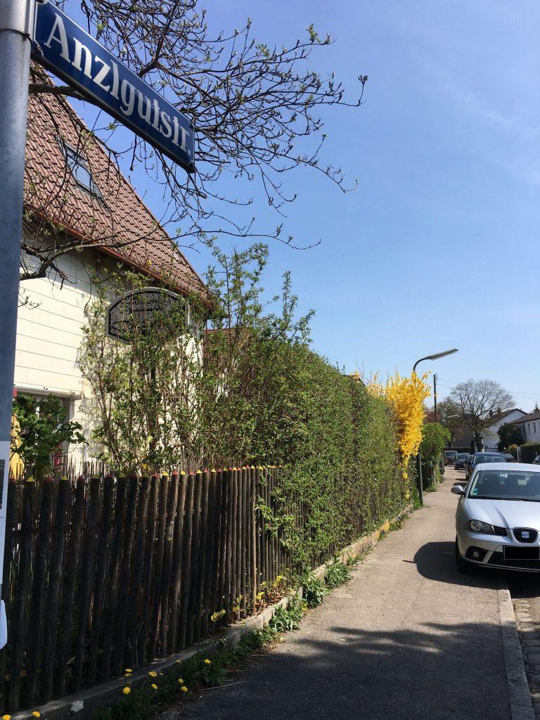 Anzlgutstraße