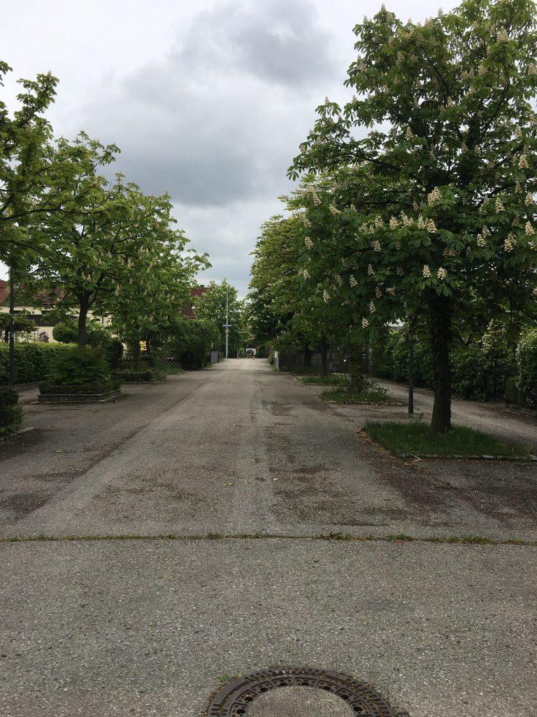 Michl-Lang-Weg