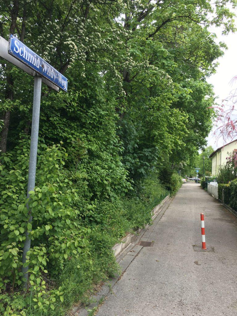 Schmid-Wildy-Weg