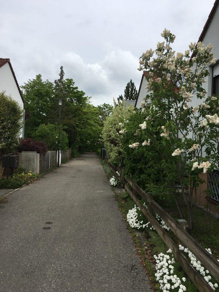 Werner-Finck-Weg