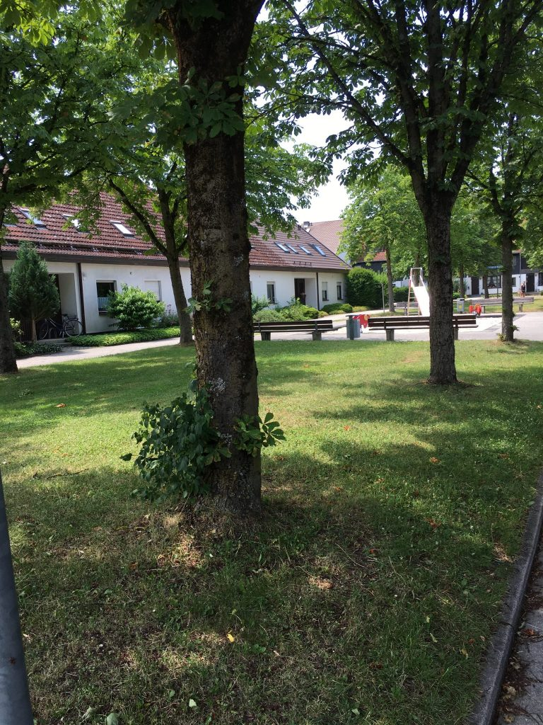 Alfred-Pongratz-Weg