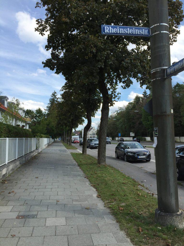 Rheinsteinstraße