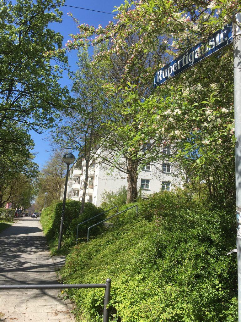 Rupertigaustraße
