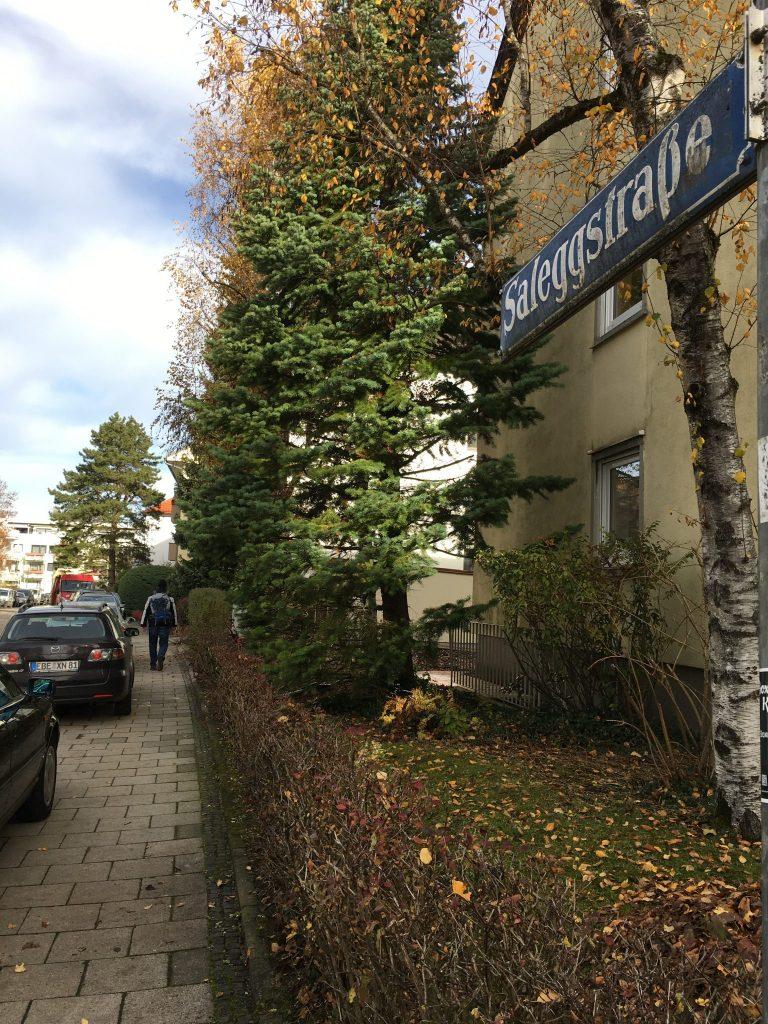 Saleggstraße