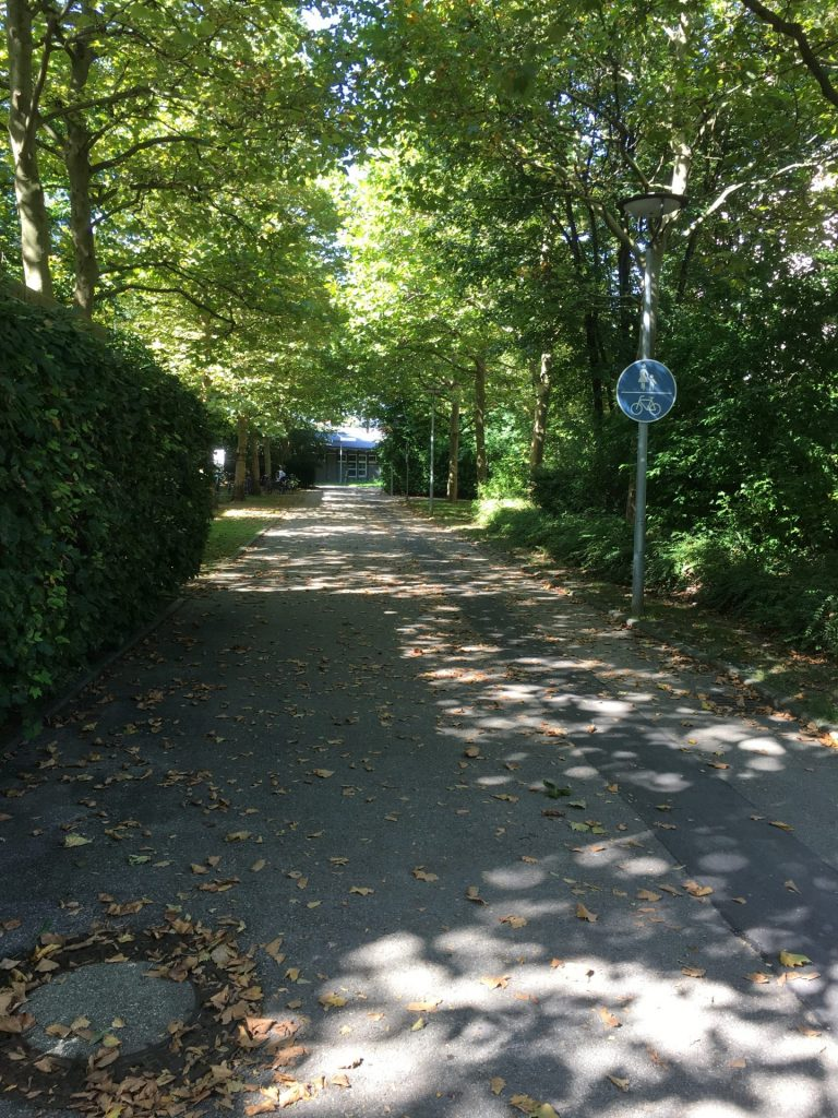 Hallsteinweg