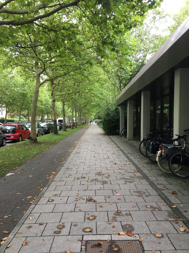 Therese-Giehse-Allee