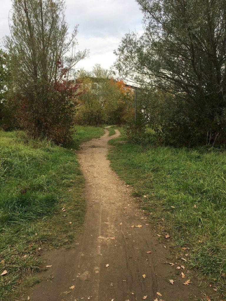 Coudenhove-Kalergi-Weg