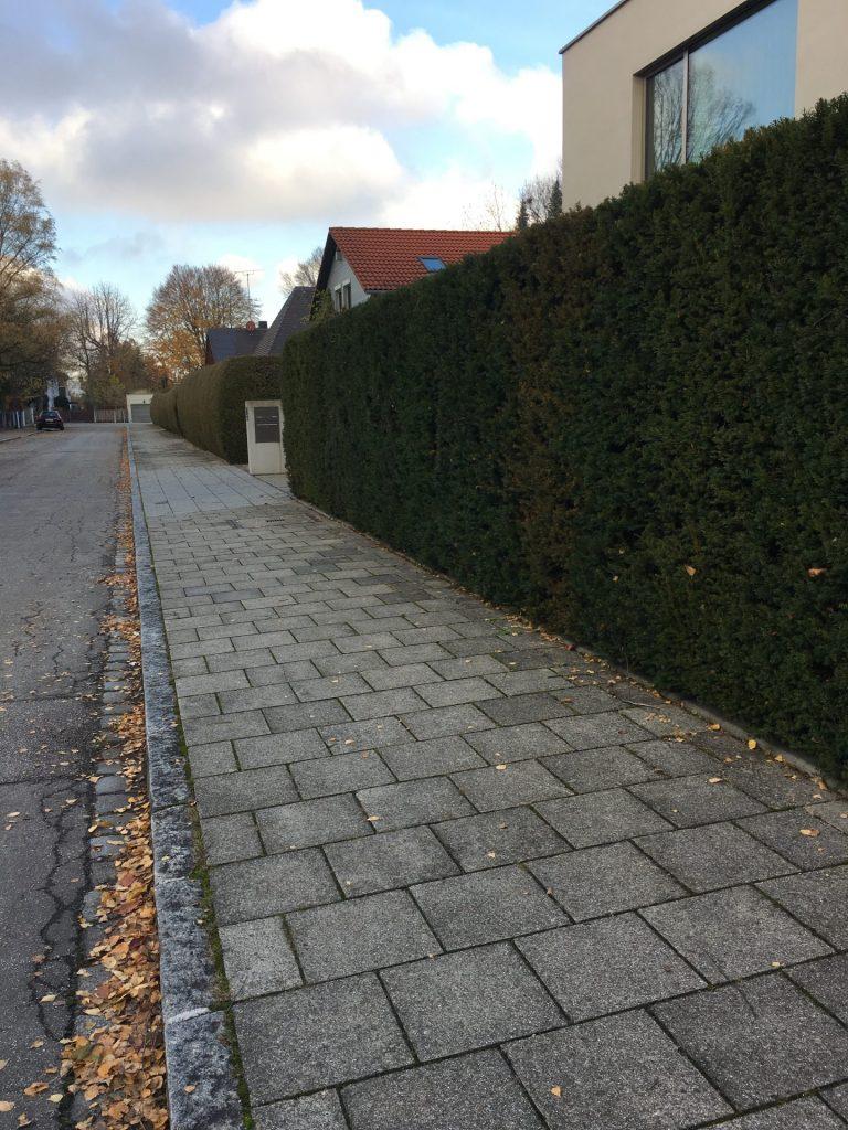 Widdersteinstraße