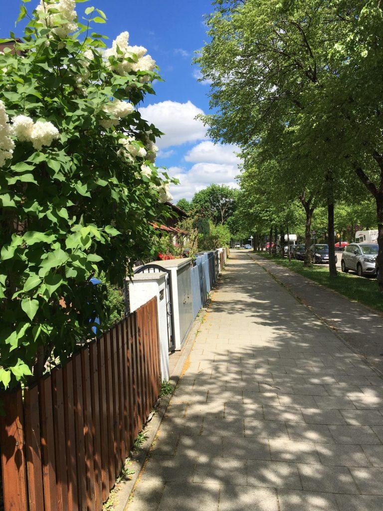 Wilhelm-Hoegner-Straße