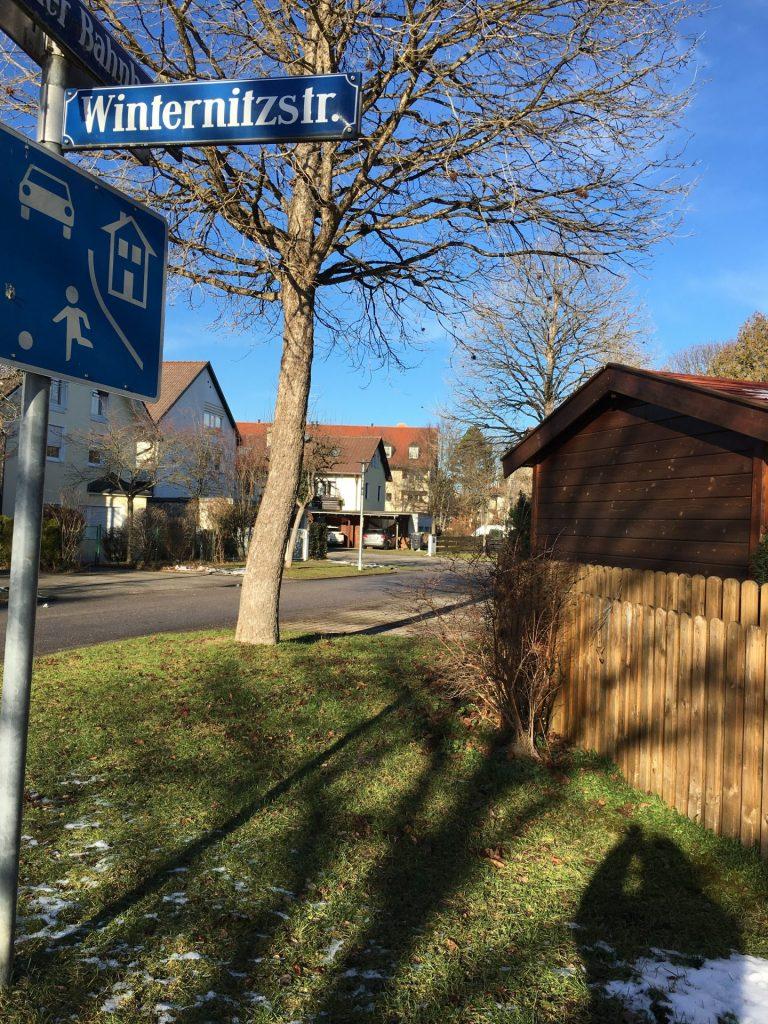 Winternitzstraße