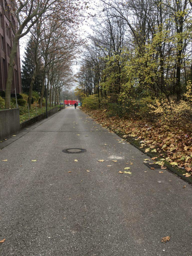 Weg vom Rudolf-Vogel-Bogen zur Carl-Wery-Straße