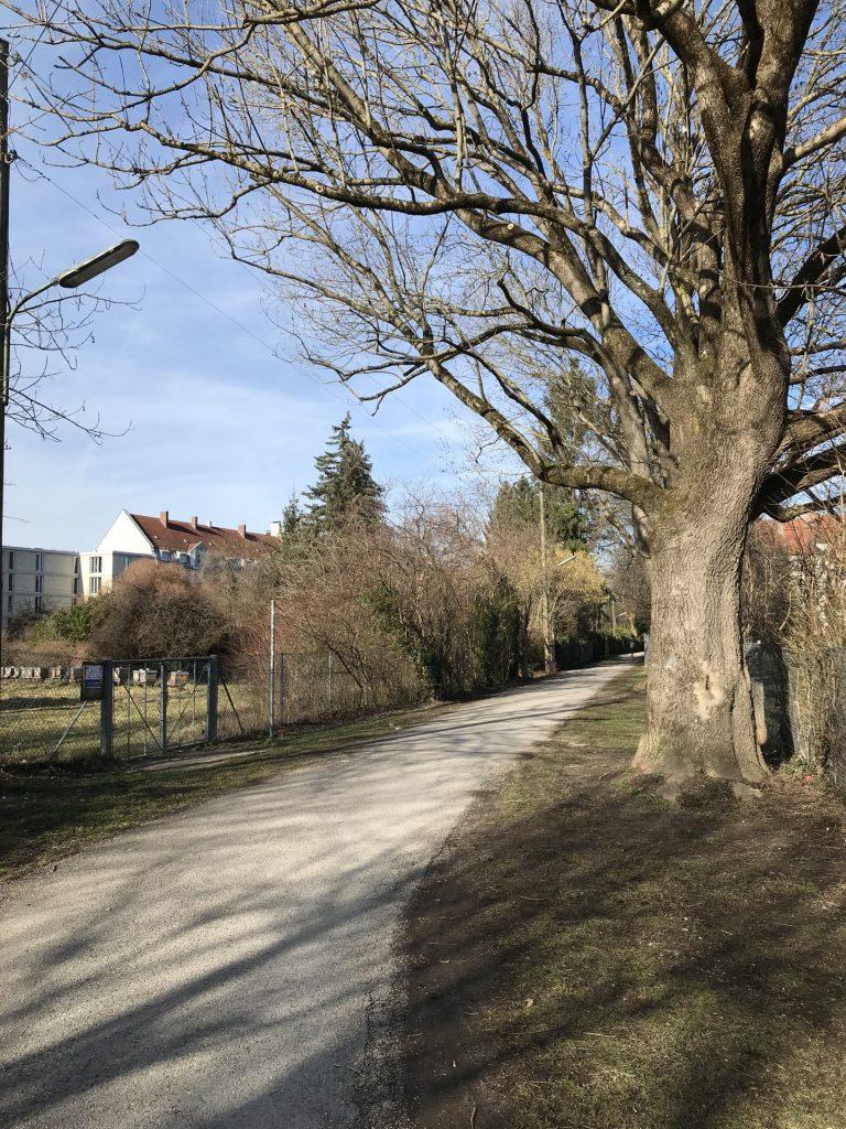 Maria-Reisinger-Weg