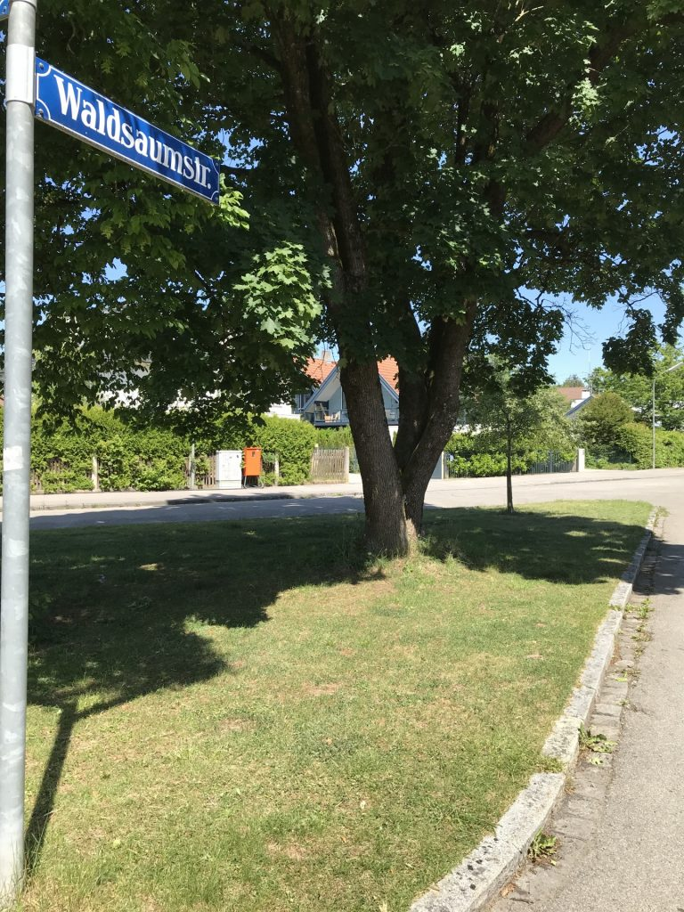 Waldsaumstraße