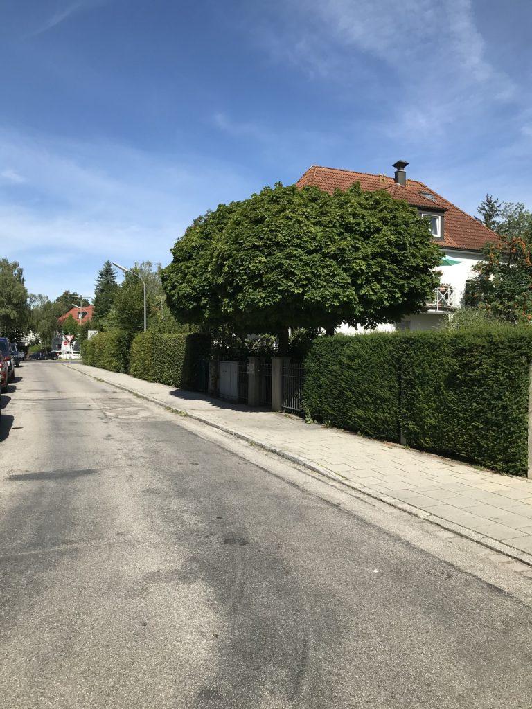 Karl-Mangold-Straße