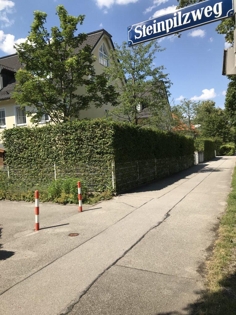 Steinpilzweg