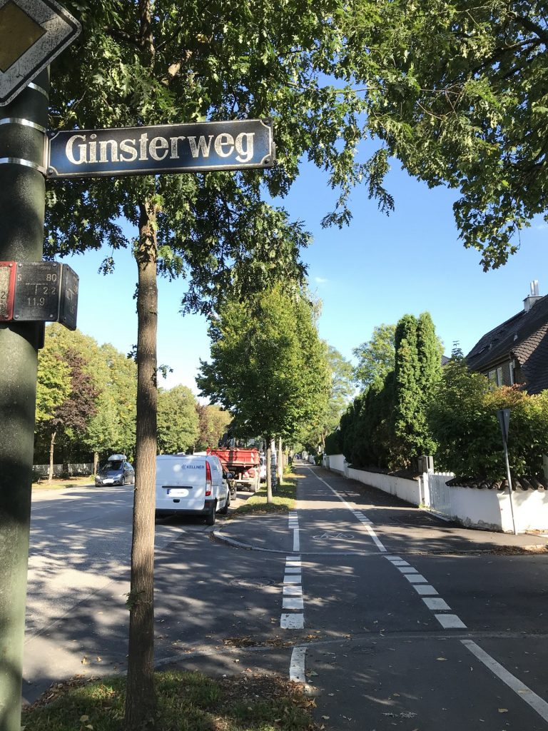 Ginsterweg