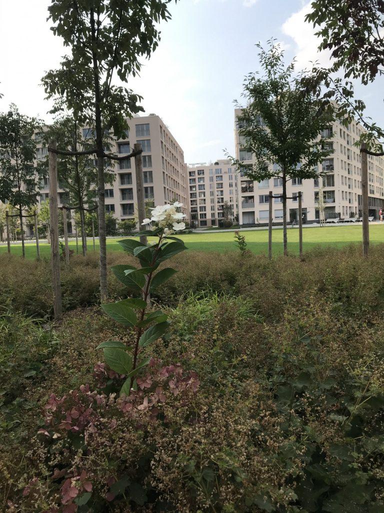 Grünanlage an der Boschetsrieder Straße