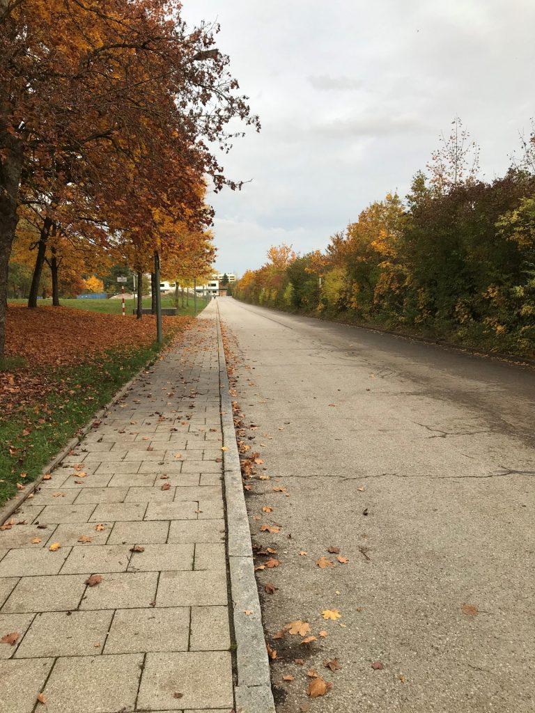 Elisabeth-Stoeber-Straße