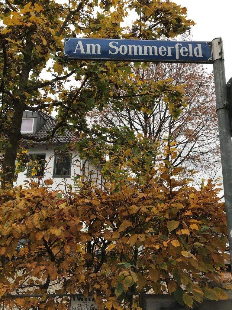 Am Sommerfeld